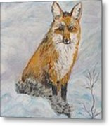 Sitting Sly Metal Print by Caroline Owen-Doar