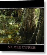 Six Mile Cypress Fort Myers Florida Metal Print