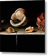 Six Shells On A Stone Shelf Metal Print