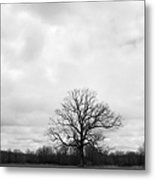 Skeleton Tree Metal Print