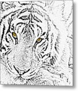 Sketch With Golden Eyes Metal Print