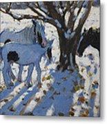 Skewbald Ponies In Winter Metal Print
