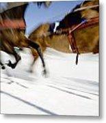 Ski Joring Race Metal Print