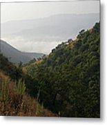 Skc 0763 Dry Green Landscape Metal Print