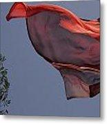 Skc 0958 Flying Saree Metal Print
