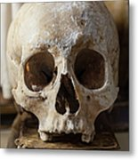 Skull And Old Book Metal Print