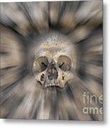 Skull - Fear And Trembling  Metal Print