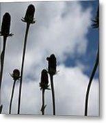 Sky Flowers Metal Print