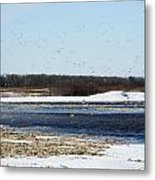 Sky Full Of Ducks Metal Print