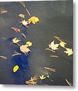 Sky Of Leaves Metal Print
