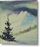 Sky Shadows And Spruce Metal Print
