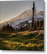 Skyline Meadows Sunstar Metal Print