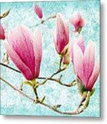 Skyward Magnolia Painterly 4 Metal Print