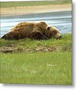 Sleeping Bear Metal Print