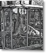 Sleeping Beauty's Night Mare Metal Print