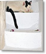 Sleeping Cat In Serifos Town Metal Print