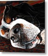 Sleeping Dogs Lie Metal Print