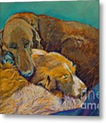Sleeping Double In A Single Bed Metal Print