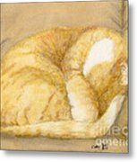 Sleeping Orange Tabby Cat Cathy Peek Animals Metal Print