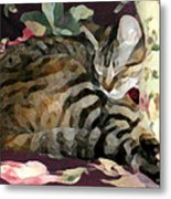 Sleeping Tabby Metal Print