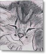 Sleepy Kitten Metal Print