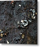 Slippery Rock  Metal Print