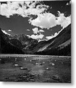 Slough Lake 5 Bw Metal Print