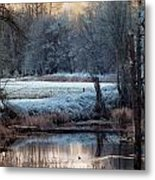 Small Duck Frosty Morning Metal Print