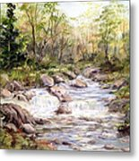 Small Falls In The Forest Metal Print