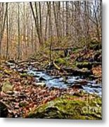 Small Pennsylvania Creek In Autumn Metal Print