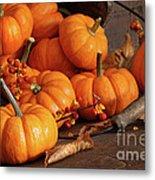 Small Pumpkins With Wood Bucket  Metal Print by Sandra Cunningham