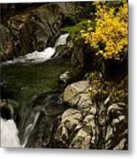 Small Stream During Fall Metal Print