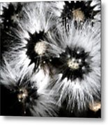 Small Worlds Metal Print
