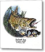 Smallmouth Bass Metal Print