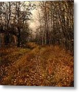 Smell Of Country  Metal Print