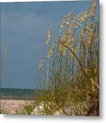 Smell The Salt Air Metal Print