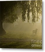 Smelly Goat In The Mist Metal Print