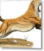 Smilodon Saber-toothed Tiger Metal Print