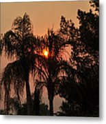 Smoke Covered Sky Sunset Thru The Palm Trees Metal Print