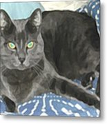 Smokey On A Blue Blanket Metal Print