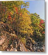 Smoky Mountain Autumn Metal Print