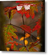 Smoky Mountain Color II Metal Print