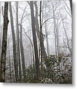 Smoky Mountain Hardwoods Metal Print