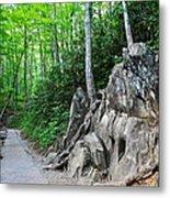 Smoky Mountain Hike Metal Print