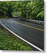 Smoky Mountain Road After Spring Rain E70 Metal Print