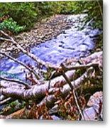 Smoky Mountain Stream Two Metal Print