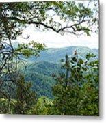 Smoky Mountain View Laurel Falls Trail Metal Print