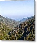 Smoky Mountain View Metal Print