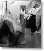 Smooth Aikido Metal Print