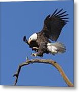 Smooth Landing 6 Metal Print
